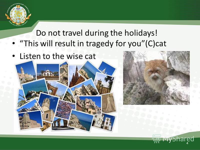 Do not travel during the holidays! 4 This will result in tragedy for you(C)cat Listen to the wise cat