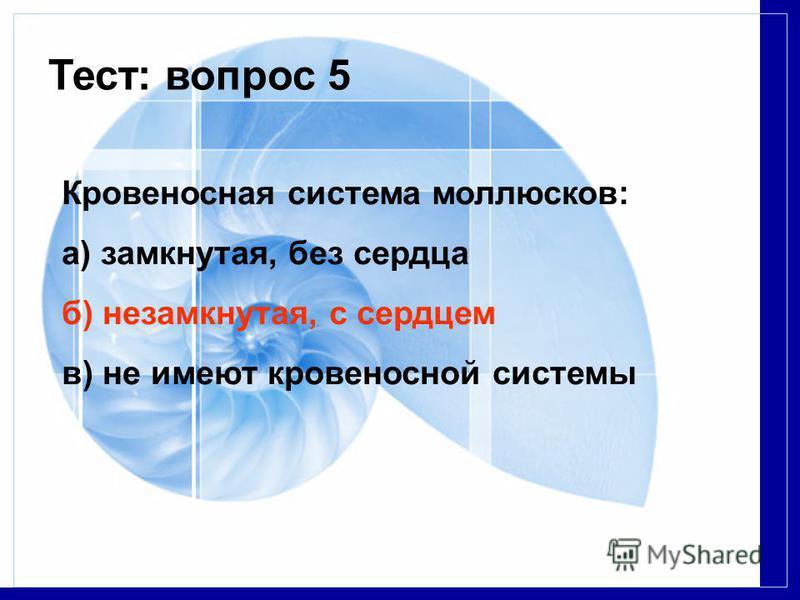Тест: вопрос 5 Кровеносная система моллюсков: a) замкнутая, без сердца б) незамкнутая, с сердцем в) не имеют кровеносной системы