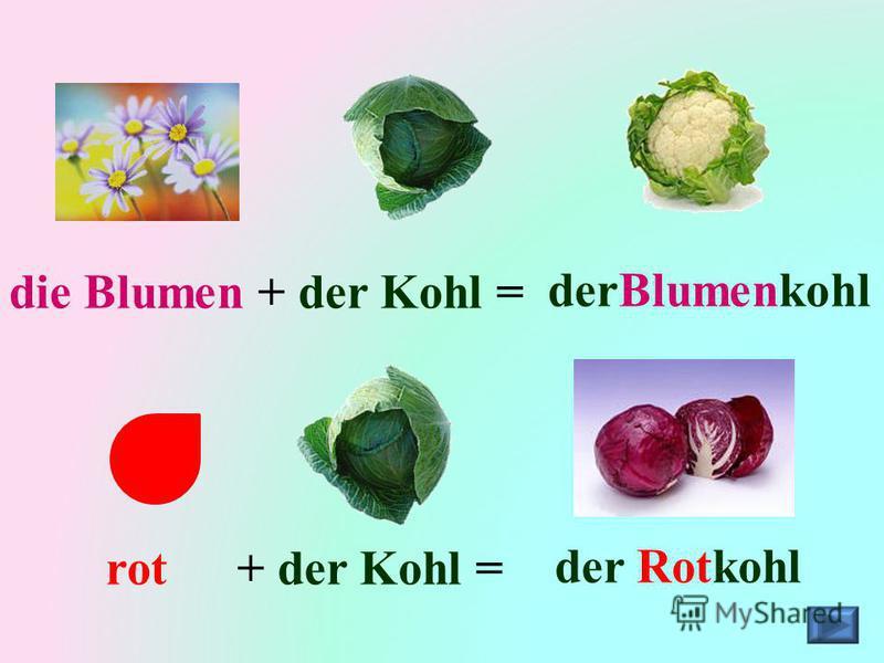 die Blumen+ der Kohl =derBlumenkohl rot+ der Kohl =der Rotkohl