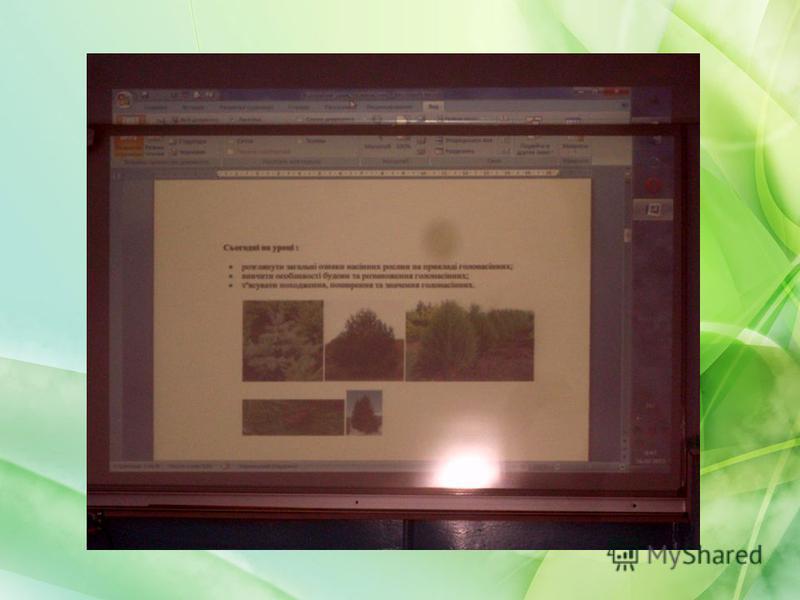 У практиці її роботи - проведення уроків різних типів за інтегральною технологією з використанням комп'ютерних та інформаційних технологій. З метою інтенсифікації навчального процесу ефективно використовує сучасні технічні засоби - комп'ютер, мультим