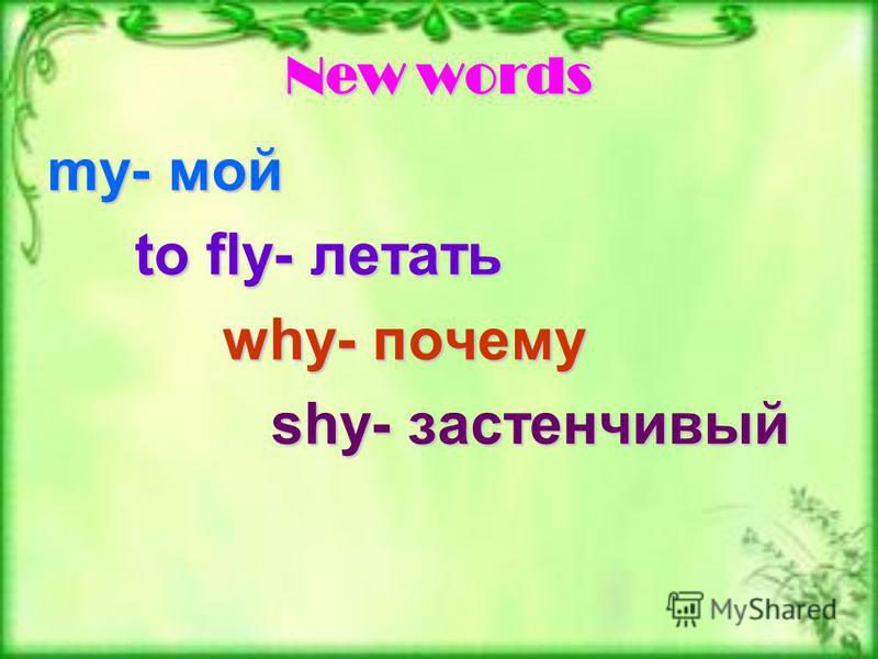 New words my- мой to fly- летать why- почему shy- застенчивый