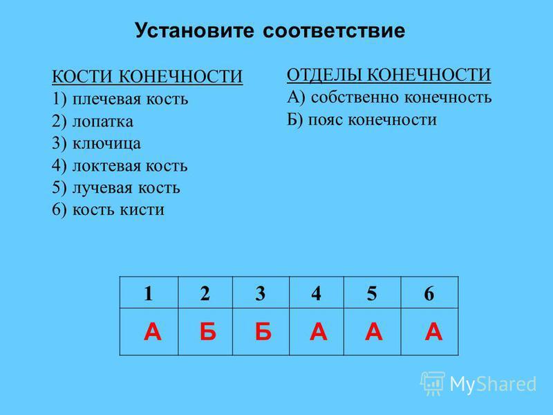 Установите соответствие КОСТИ КОНЕЧНОСТИ 1)плечевая кость 2)лопатка 3)ключица 4)локтевая кость 5)лучевая кость 6)кость кисти ОТДЕЛЫ КОНЕЧНОСТИ А) собственно конечность Б) пояс конечности 123456 АББААА