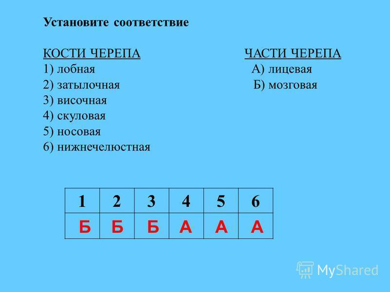 Установите соответствие КОСТИ ЧЕРЕПА ЧАСТИ ЧЕРЕПА 1) лобная А) лицевая 2) затылочная Б) мозговая 3) височная 4) скуловая 5) носовая 6) нижнечелюстная 123456 БББААА