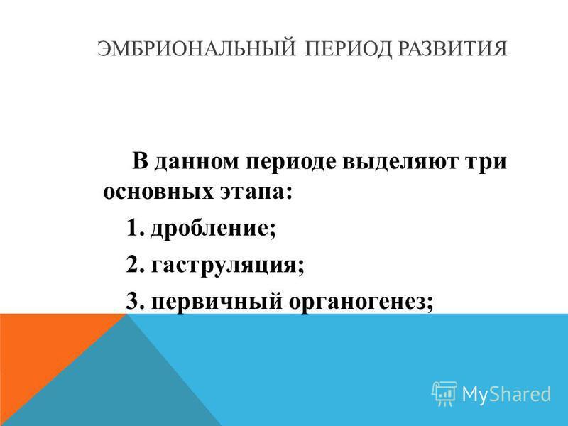 ЭМБРИОНАЛЬНЫЙ ПЕРИОД РАЗВИТИЯ В данном периоде выделяют три основных этапа: 1. дробление; 2. гаструляция; 3. первичный органогенез;