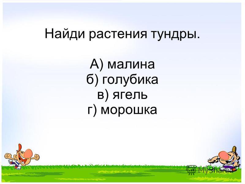 Найди растения тундры. А) малина б) голубика в) ягель г) морошка