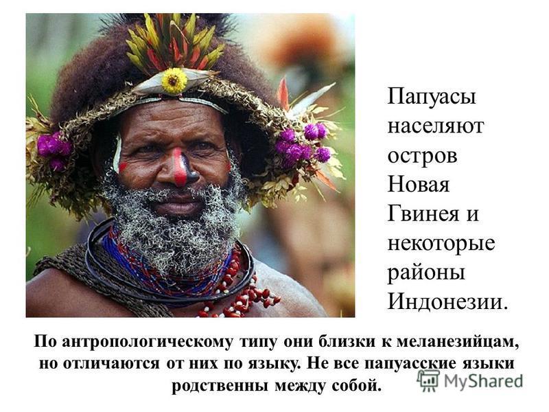 Папуасы населяют остров Новая Гвинея и некоторые районы Индонезии. По антропологическому типу они близки к меланезийцам, но отличаются от них по языку. Не все папуасские языки родственны между собой.