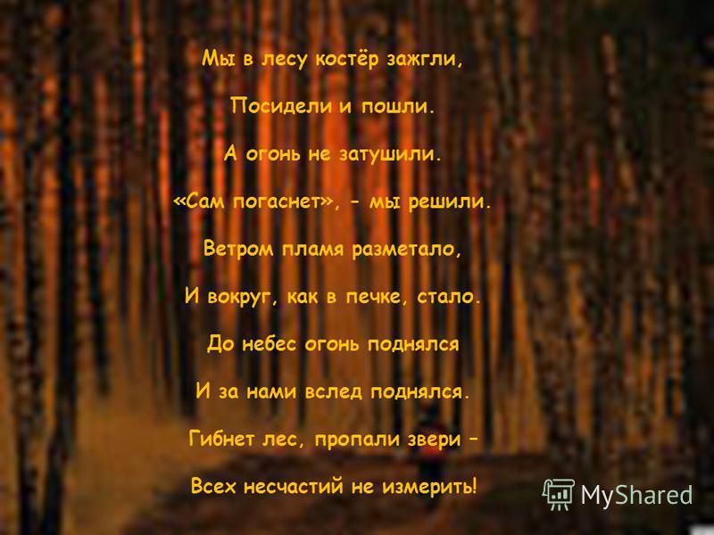 Мы в лесу костёр зажгли, Посидели и пошли. А огонь не затушили. «Сам погаснет», - мы решили. Ветром пламя разметало, И вокруг, как в печке, стало. До небес огонь поднялся И за нами вслед поднялся. Гибнет лес, пропали звери – Всех несчастий не измерит