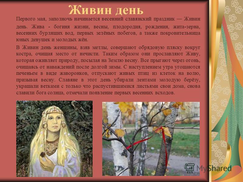 Живин день Первого мая, за полночь начинается весенний славянский праздник Живин день. Жива - богиня жизни, весны, плодородия, рождения, жита-зерна, весенних бурлящих вод, первых зелёных побегов, а также покровительница юных девушек и молодых жён. В