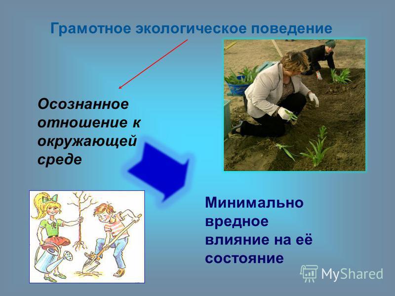 Грамотное экологическое поведение Осознанное отношение к окружающей среде Минимально вредное влияние на её состояние
