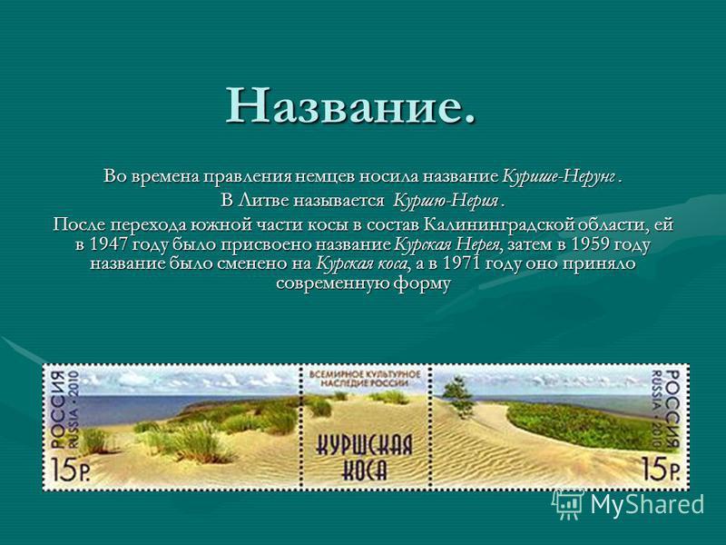 Название. Во времена правления немцев носила название Курише-Нерунг. В Литве называется Куршю-Нерия. После перехода южной части косы в состав Калининградской области, ей в 1947 году было присвоено название Курская Нерея, затем в 1959 году название бы