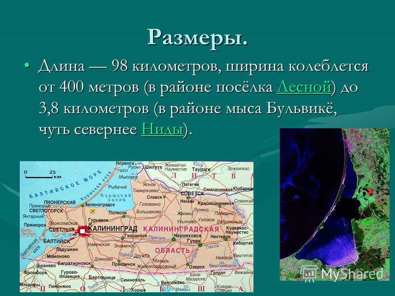 Размеры. Длина 98 километров, ширина колеблется от 400 метров (в районе посёлка Лесной) до 3,8 километров (в районе мыса Бульвикё, чуть севернее Ниды).Длина 98 километров, ширина колеблется от 400 метров (в районе посёлка Лесной) до 3,8 километров (в