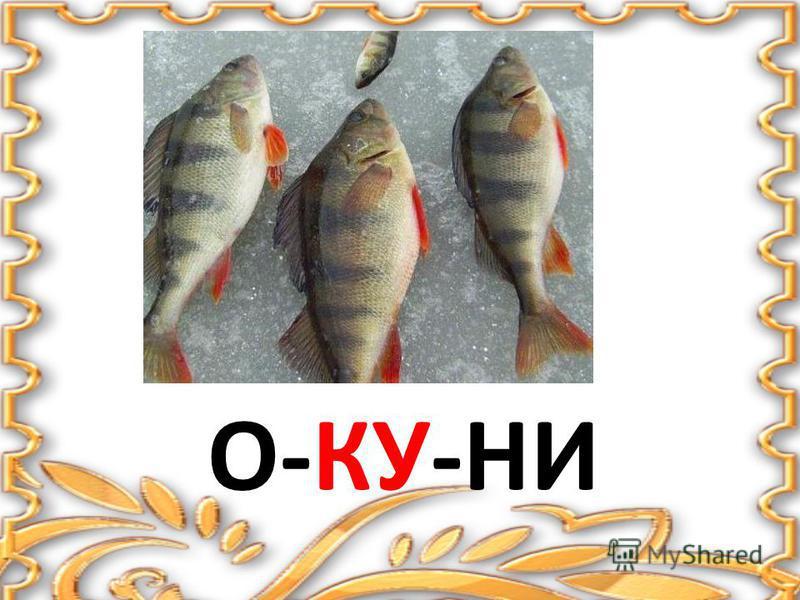 О-КУ-НИ