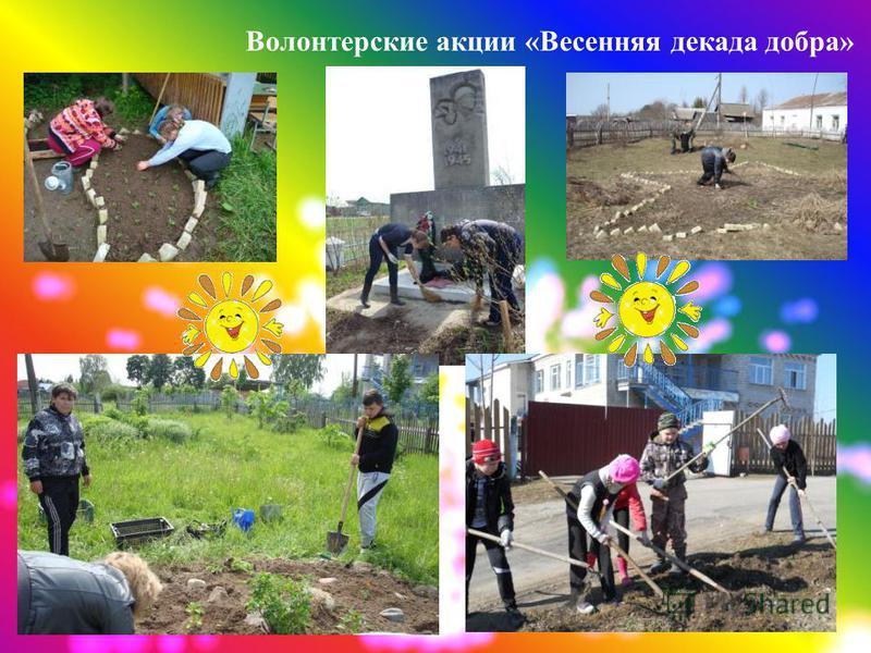 Волонтерские акции «Весенняя декада добра»
