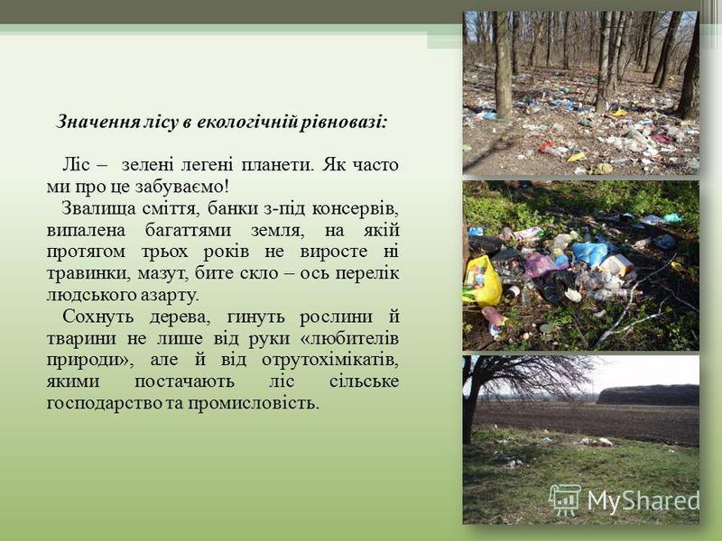 Значення лісу в екологічній рівновазі: Ліс – зелені легені планети. Як часто ми про це забуваємо! Звалища сміття, банки з-під консервів, випалена багаттями земля, на якій протягом трьох років не виросте ні травинки, мазут, бите скло – ось перелік люд