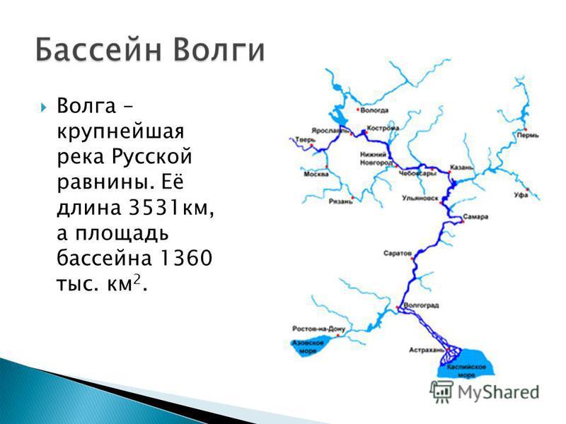 Волга – крупнейшая река Русской равнины. Её длина 3531 км, а площадь бассейна 1360 тыс. км 2.