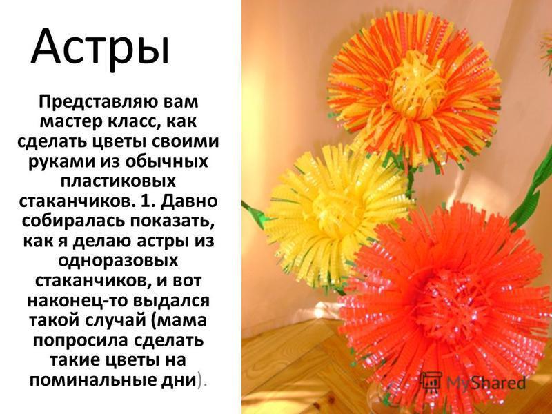 Астры Представляю вам мастер класс, как сделать цветы своими руками из обычных пластиковых стаканчиков. 1. Давно собиралась показать, как я делаю астры из одноразовых стаканчиков, и вот наконец-то выдался такой случай (мама попросила сделать такие цв