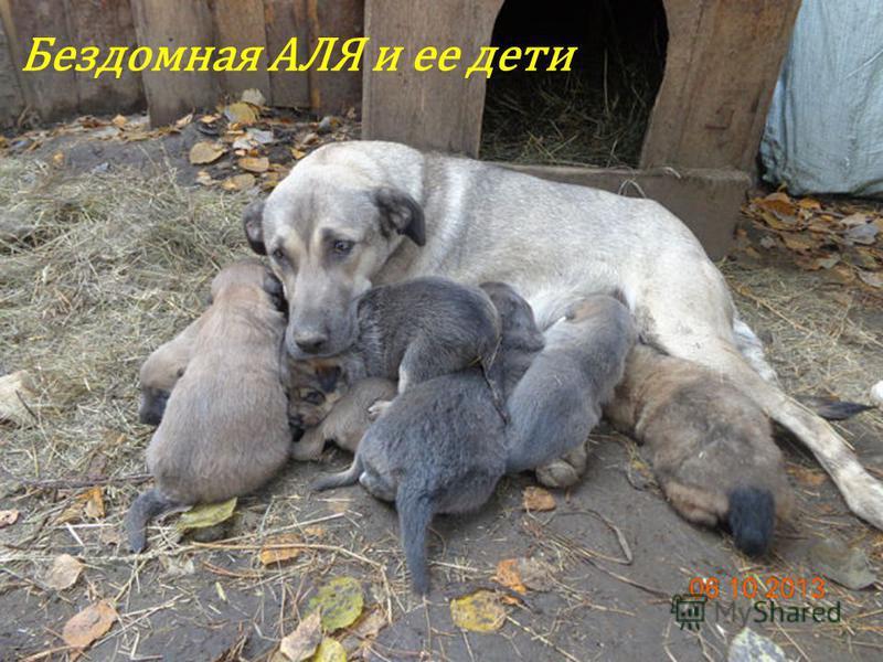 Бездомная АЛЯ и ее дети