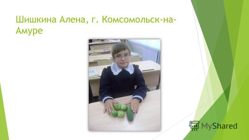 Шишкина Алена, г. Комсомольск-на- Амуре