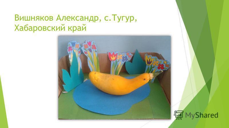 Вишняков Александр, с.Тугур, Хабаровский край