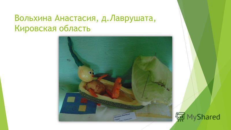 Вольхина Анастасия, д.Лаврушата, Кировская область