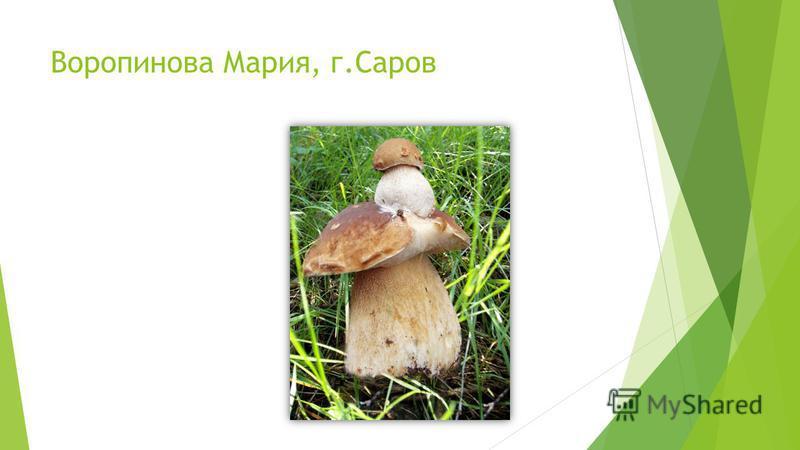 Воропинова Мария, г.Саров