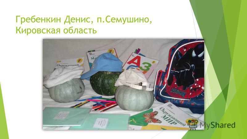 Гребенкин Денис, п.Семушино, Кировская область