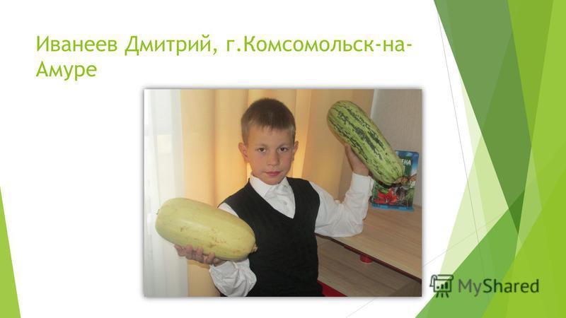 Иванеев Дмитрий, г.Комсомольск-на- Амуре