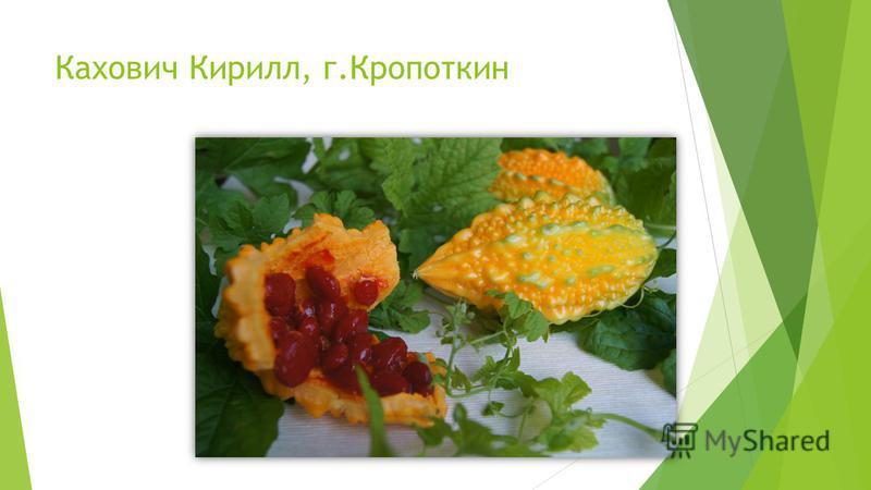 Кахович Кирилл, г.Кропоткин