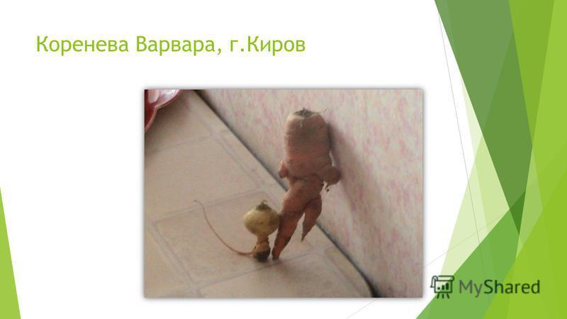 Коренева Варвара, г.Киров