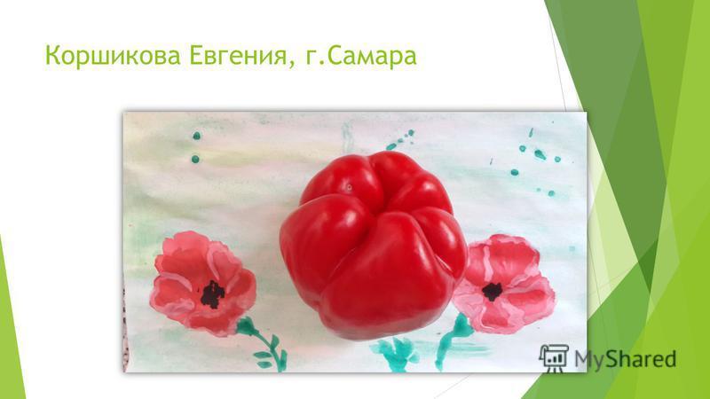 Коршикова Евгения, г.Самара