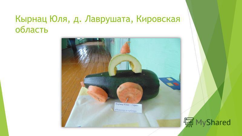 Кырнац Юля, д. Лаврушата, Кировская область