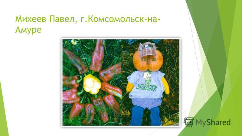 Михеев Павел, г.Комсомольск-на- Амуре