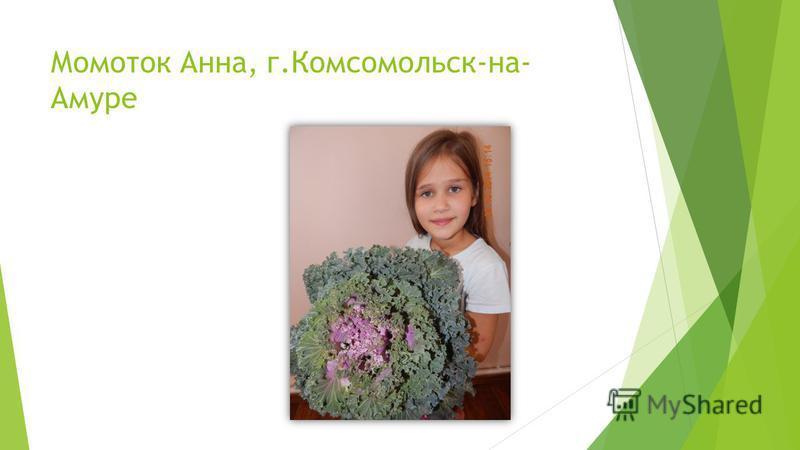 Момоток Анна, г.Комсомольск-на- Амуре