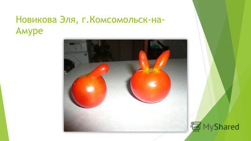 Новикова Эля, г.Комсомольск-на- Амуре