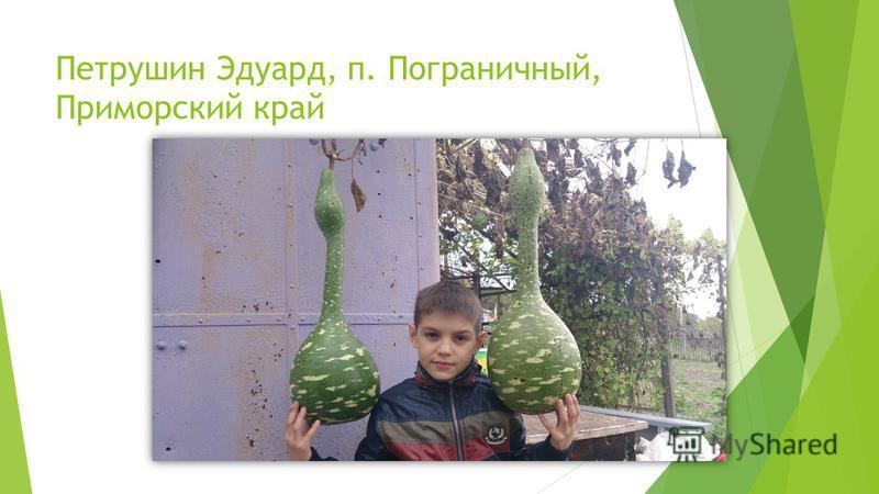Петрушин Эдуард, п. Пограничный, Приморский край