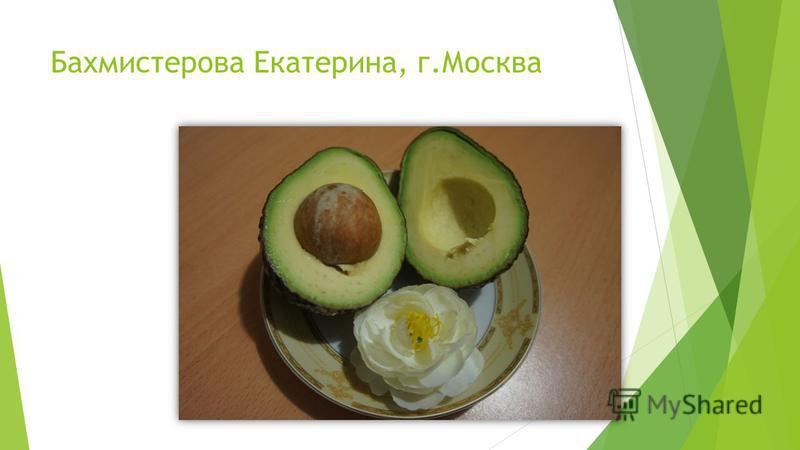 Бахмистерова Екатерина, г.Москва