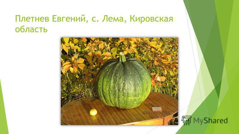 Плетнев Евгений, с. Лема, Кировская область