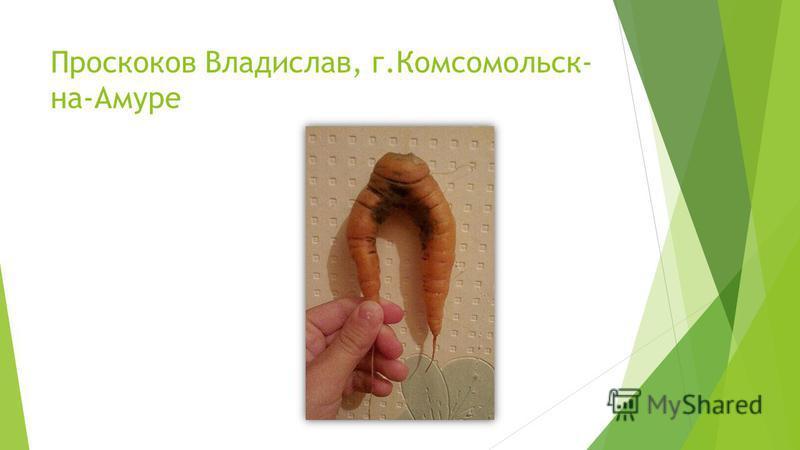 Проскоков Владислав, г.Комсомольск- на-Амуре