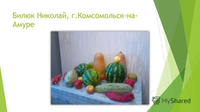 Билюк Николай, г.Комсомольск-на- Амуре