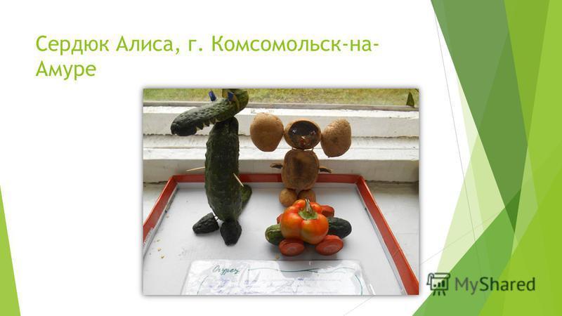 Сердюк Алиса, г. Комсомольск-на- Амуре