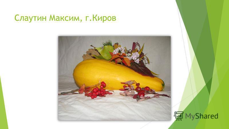 Слаутин Максим, г.Киров