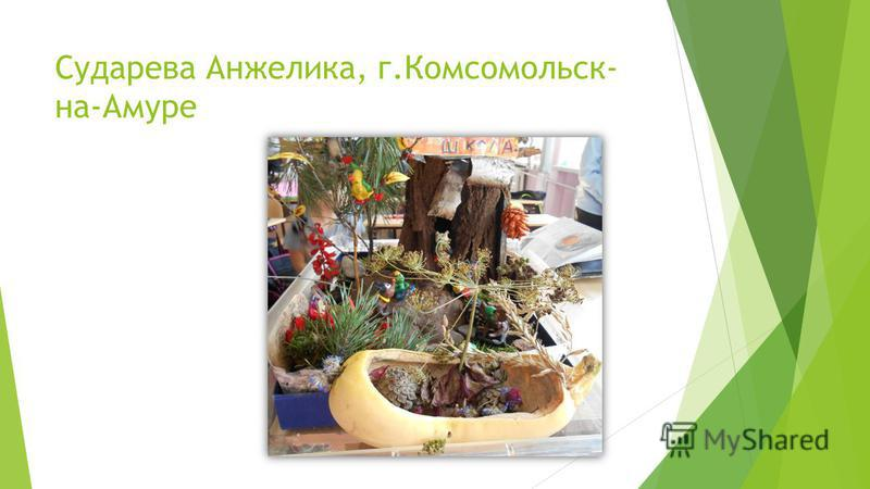 Сударева Анжелика, г.Комсомольск- на-Амуре
