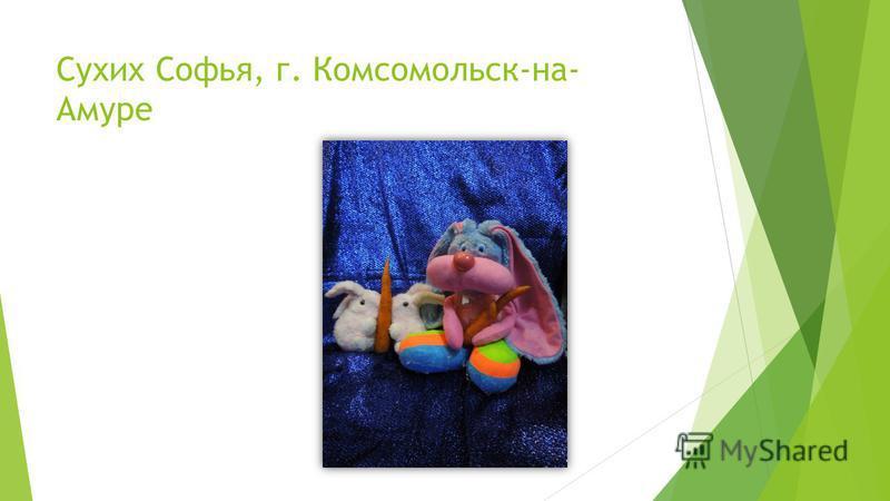Сухих Софья, г. Комсомольск-на- Амуре