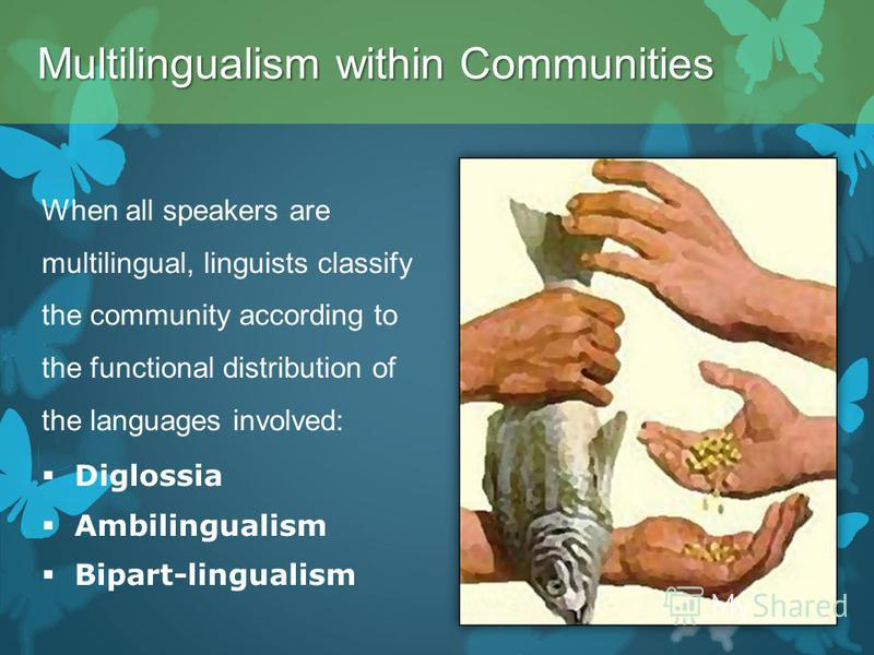 When all speakers are multilingual, linguists classify the community according to the functional distribution of the languages involved: Diglossia Ambilingualism Bipart-lingualism Multilingualism within Communities