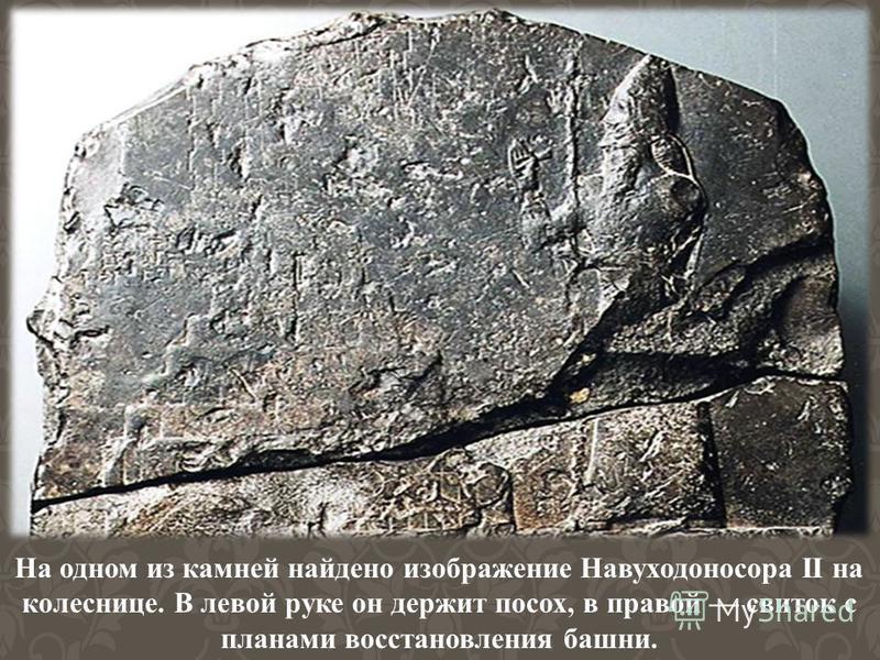 На одном из камней найдено изображение Навуходоносора II на колеснице. В левой руке он держит посох, в правой свиток с планами восстановления башни.