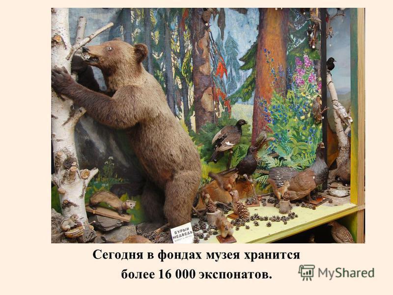 Сегодня в фондах музея хранится более 16 000 экспонатов.