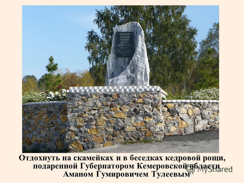 Отдохнуть на скамейках и в беседках кедровой рощи, подаренной Губернатором Кемеровской области Аманом Гумировичем Тулеевым