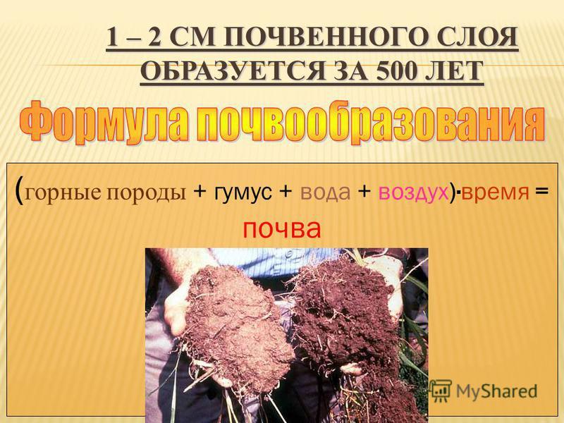 1 – 2 СМ ПОЧВЕННОГО СЛОЯ ОБРАЗУЕТСЯ ЗА 500 ЛЕТ ( горные породы + гумус + вода + воздух) · время = почва