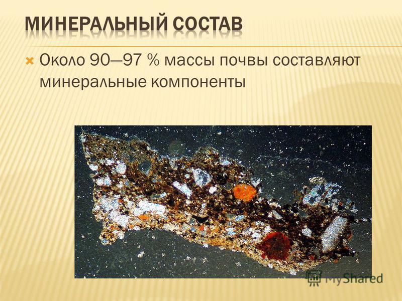 Около 9097 % массы почвы составляют минеральные компоненты