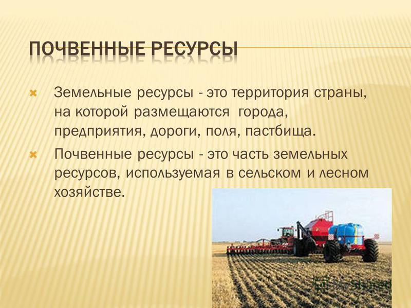 Земельные ресурсы - это территория страны, на которой размещаются города, предприятия, дороги, поля, пастбища. Почвенные ресурсы - это часть земельных ресурсов, используемая в сельском и лесном хозяйстве.